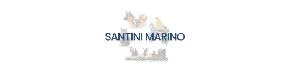 Santini Marino